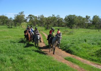 Stellenbosch Game Reserve Horse Riding Trails