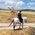 Horse Rides At Petes 🇿🇦